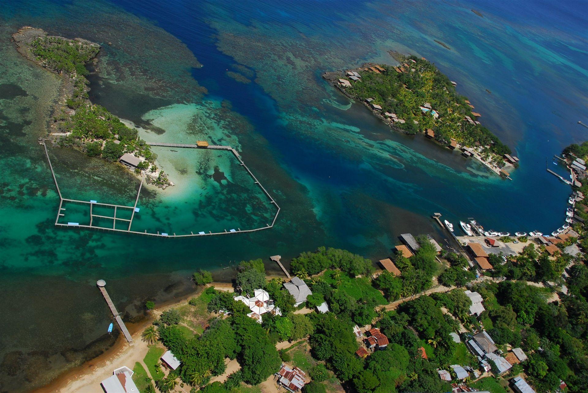 Anthony 39 s key resort all inclusive roatan for Roatan dive resort